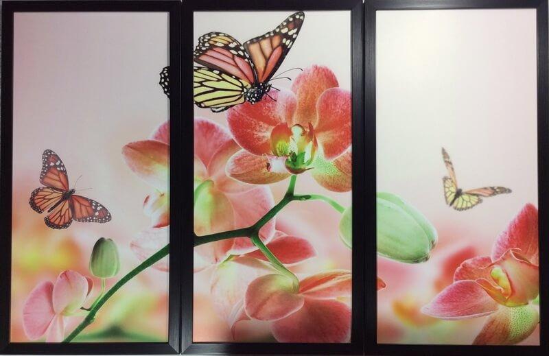 Орхидея с бабочками