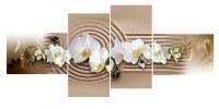 Белая орхидея  круги из песка