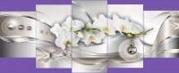 Белая орхидея с кругами