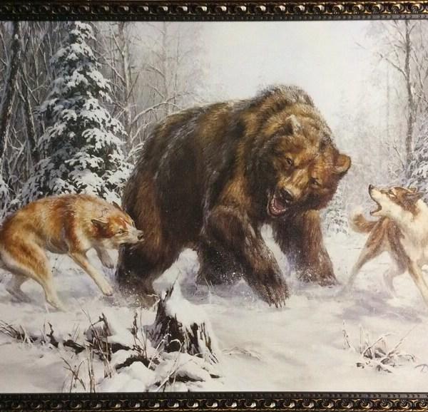 Лайки и медведи